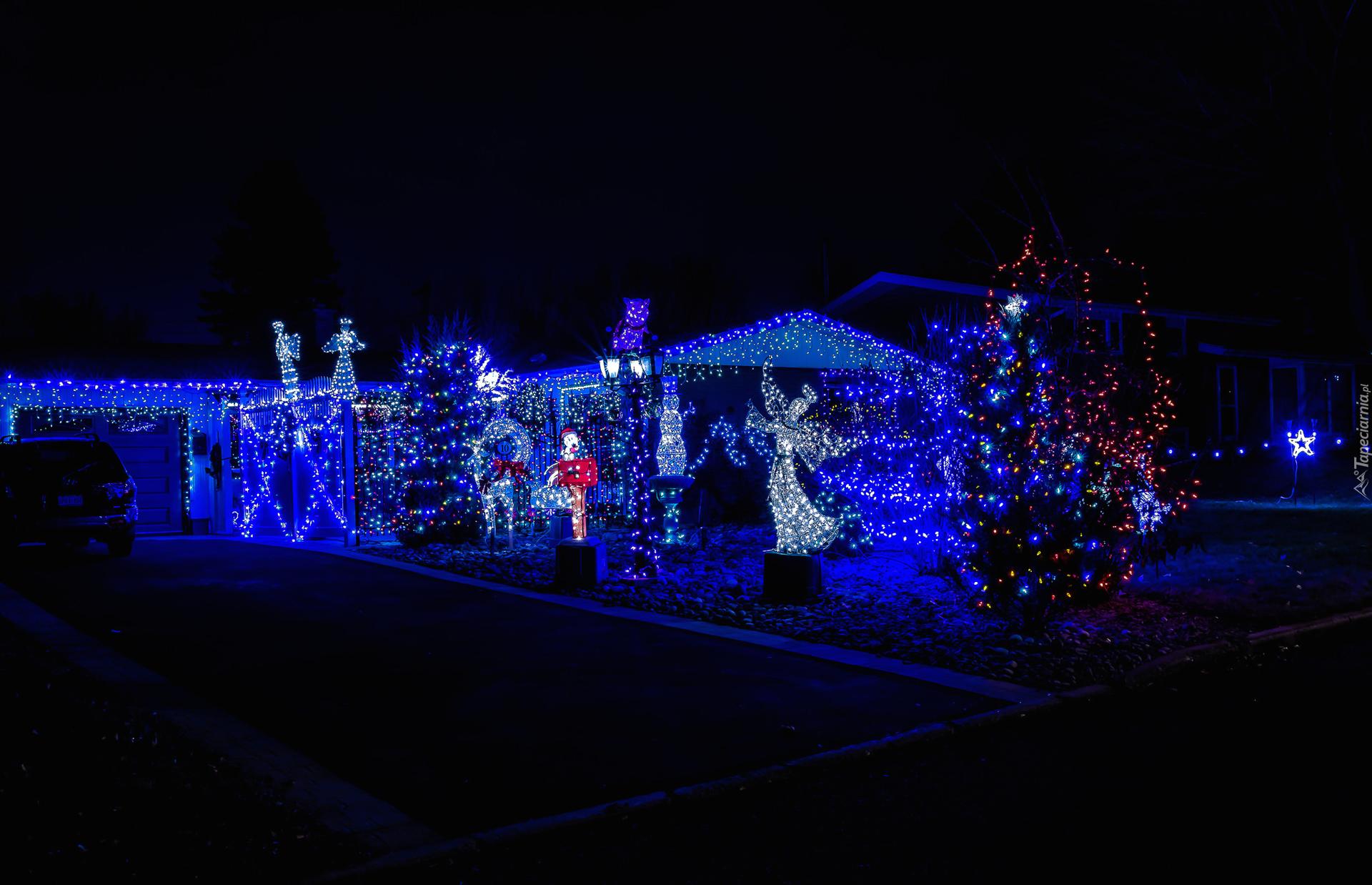 świąteczne światełka Na Drzewach I Budynkach