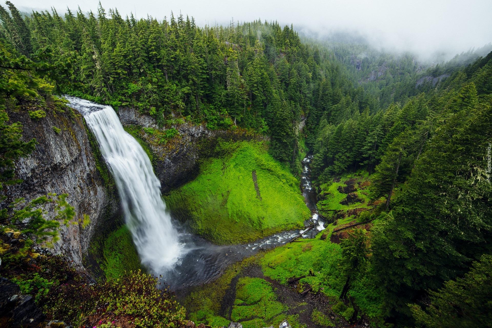 tapeta-wodospad-salt-creek-falls-w-oregonie.jpg