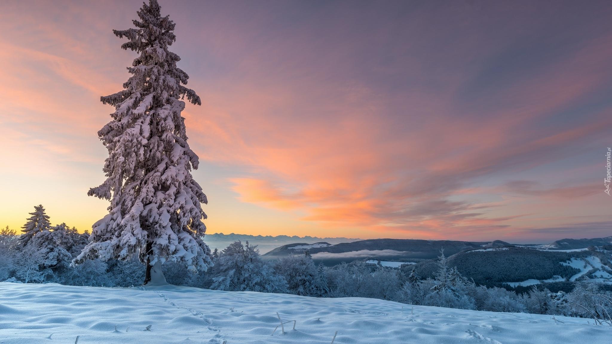 Zimowy górski krajobraz