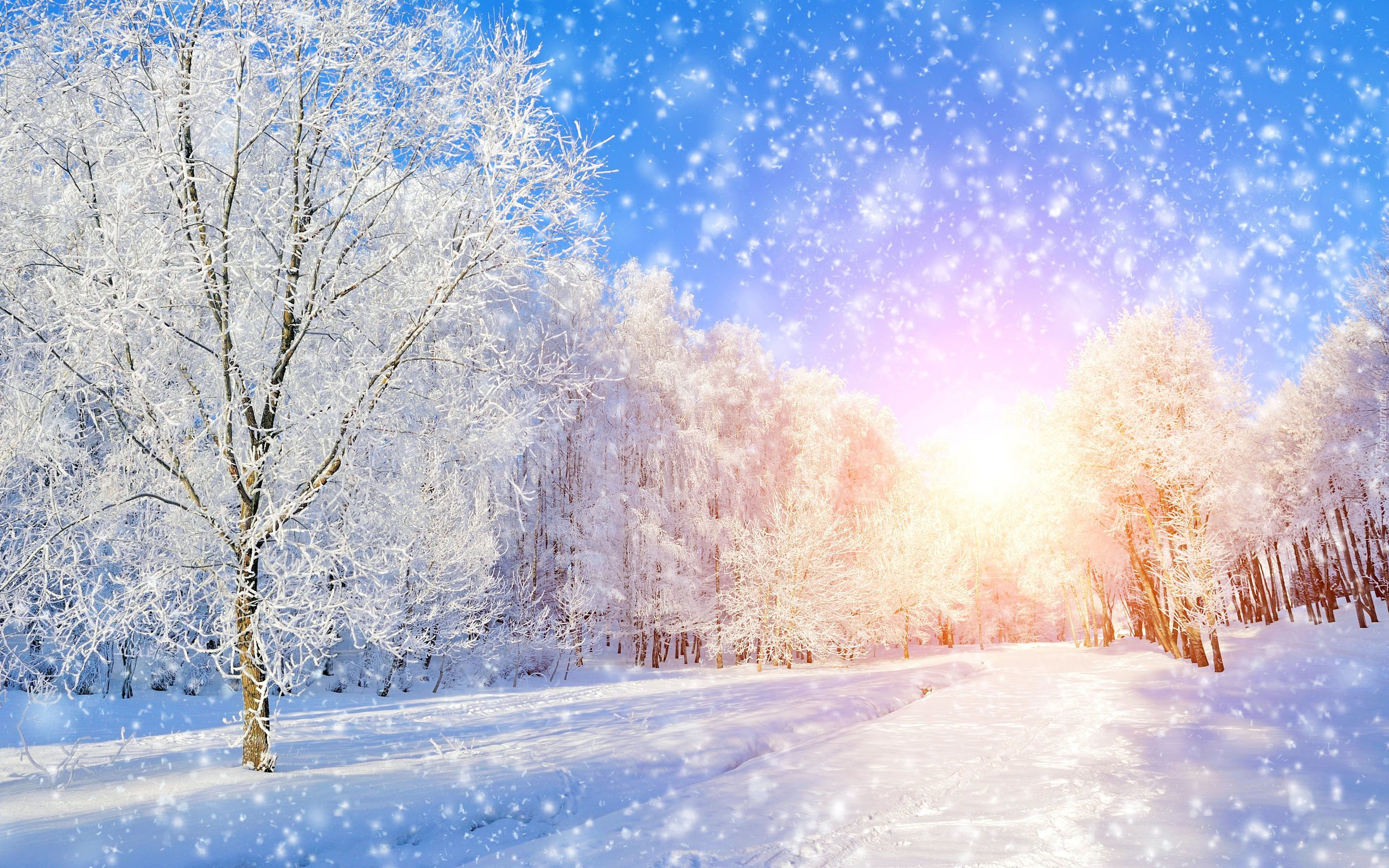 Wallpapers e sfondi paesaggi invernali con neve sfondi for Pavan arredamenti biancade