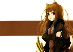 Spice and Wolf, Rude, Włosy