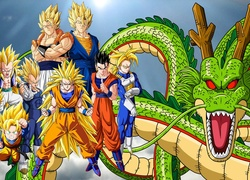 Dragon Ball Z, Son Goku, Vegeta