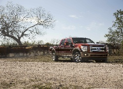 Ford, King Ranch Lineup