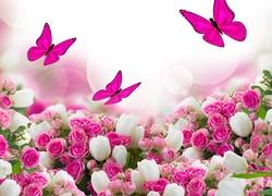 Kwiaty, Roze, Motyle, Grafika, Komputerowa, Dzień Kobiet