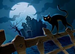 Halloween, Kot, Płot, Dom, Księżyc, Noc