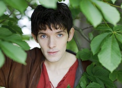 Serial, Przygody Merlina, The Adventures of Merlin, Aktor, Colin Morgan