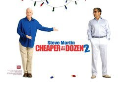 Cheaper By The Dozen 2, mężczyzna, Steve Martin