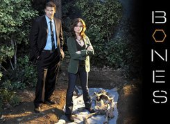 Serial, Bones, Kości, David Boreanaz, Emily Deschanel