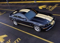 Ford Mustang Shelby, Namalowane, Pasy