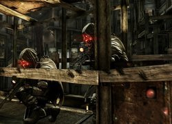 Screeny, Killzone 2