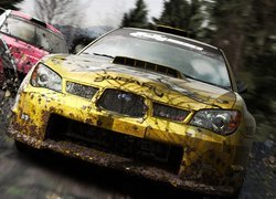 Screen, Colin McRae: DiRT 2