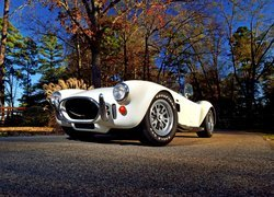 AC Cobra 427 Shelby 1967