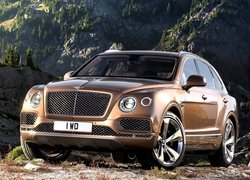 Bentley Bentayga przodem