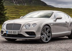 Bentley Continental GT przodem