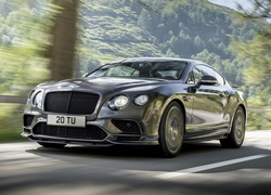 Bentley Continental Supersports, 2017, Droga