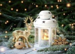 Kompozycja, Jelonek, Lampion, Świerk, Dekoracje, Boże Narodzenie