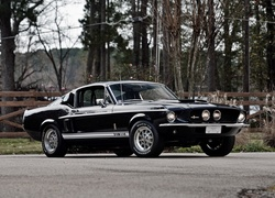 Zabytkowy, Ford Mustang Shelby GT350, 1967