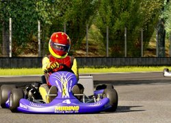 Karting, Tor, Gokarty