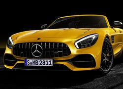 Mercedes-AMG GT Roadster S, Cabrio