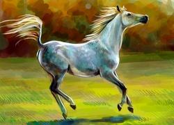 Obraz Konia W Akwareli