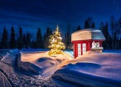 Zima, Oświetlona, Choinka, Czerwona, Budka, Las, Drzewa, Zaspy śnieżne, Noc