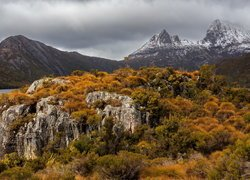 Park Narodowy Cradle Mountain Lake St Clair w Tasmanii