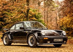 Porsche 911 turbo 930 Limited Edition