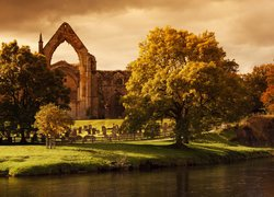 Riuny opactwa Bolton Priory w Anglii
