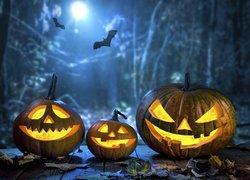 Halloween, Świecące, Dynie, Nietoperze