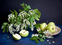 [Obrazek: tapeta-zielone-jablka-i-galazki-czeremch...ozycji.jpg]